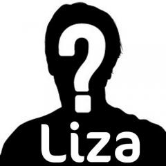 Liza-deelnemers2012